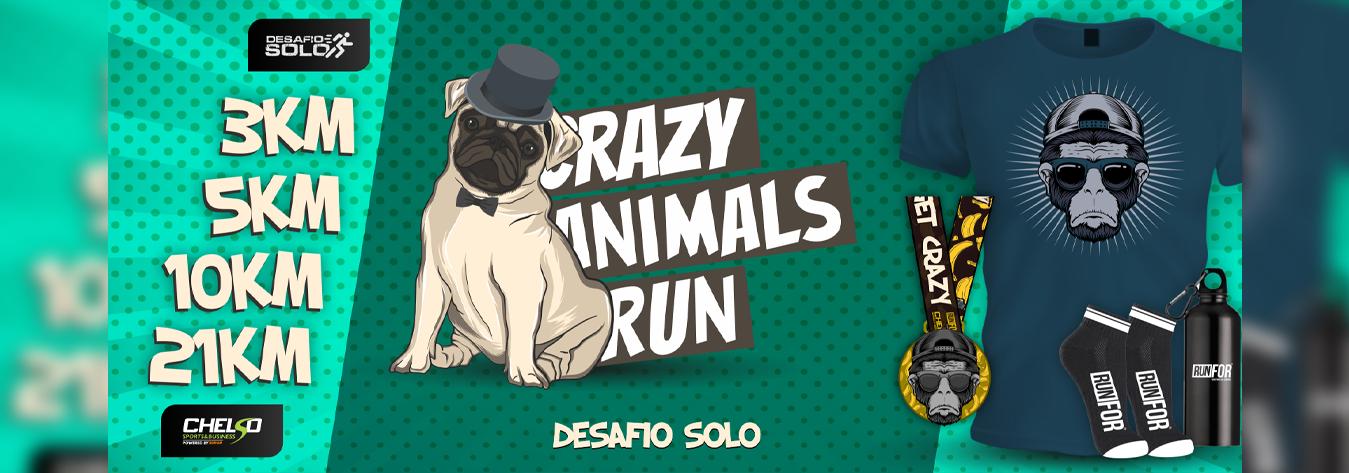 Desafio Crazy Animals